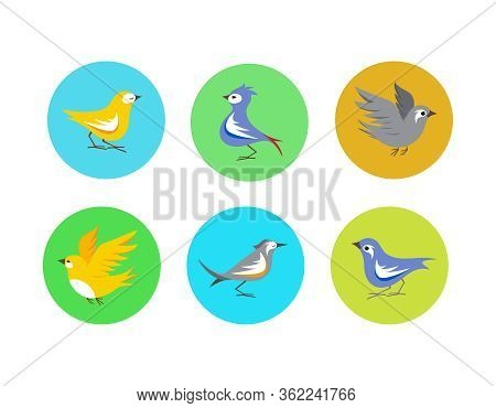 Small Cartoony Birds Character Vector Elements Collection