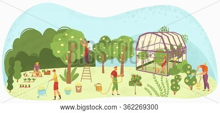 Garden Care People Gardening, Harvesting And Caring For Trees, Plants In Plant-house And Flowers Gar