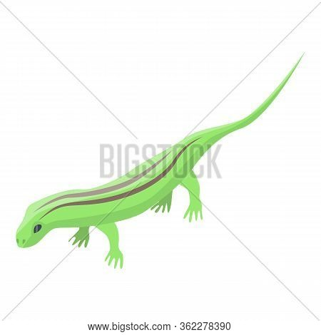 Field Lizard Icon. Isometric Of Field Lizard Vector Icon For Web Design Isolated On White Background
