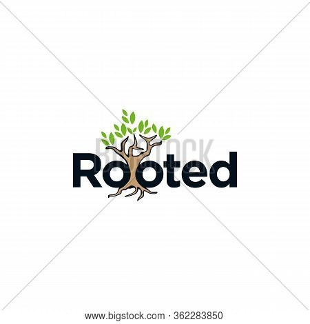 Letter Rooted With Tree Roots On The White Background. Flat Design Letter Rooted For Element Design.