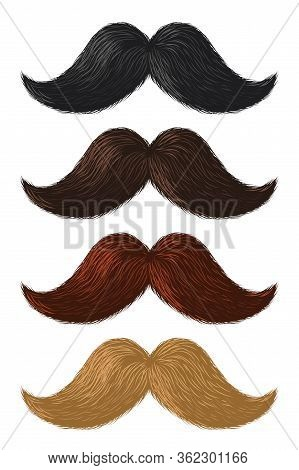 Realistic Color Moustaches. Black, Blond And Brown Mustache, Hipster And Gentleman Elegance Design,
