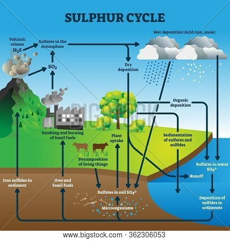 Sulphur Cycle Vector Illustration. Labeled Geological Earth Elements Scheme. Diagram With Circulatio