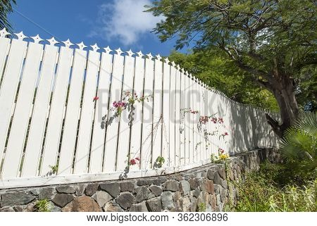 Tropical Flowers Growing Through White Wooden Fence In Charlotte Amalie Town On Dt. Thomas Island (u