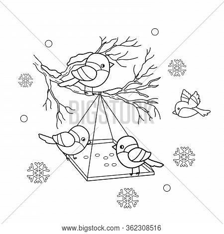 Coloring Page Outline Of Cartoon Birds In The Winter. Bird Feeder. Bullfinch, Titmouse, Sparrows. Co
