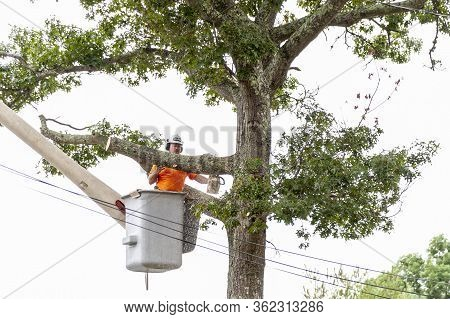 Fairhaven, Massachusetts, Usa - August 13, 2018: Wood Chips Spraying From Chainsaw As Tree Cutter Sa