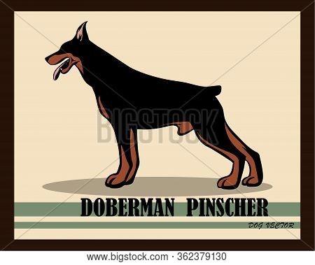 Vector Illustration Logo Of A Doberman Pinscher Dog. It Is Standing.