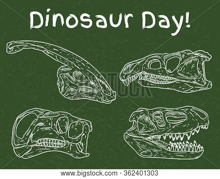 Dinosaur Day In School. Preschool Paleontology Day. Carnivorous And Herbivorous Fossils Drawn On Gre