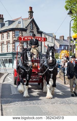 Penrith, England - May 1:  Two Shire Horses Pull A Thwaites Dray Wagon In The May Day Parade In Penr