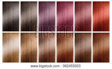 Hair Tints Colors Set Palette On White Background