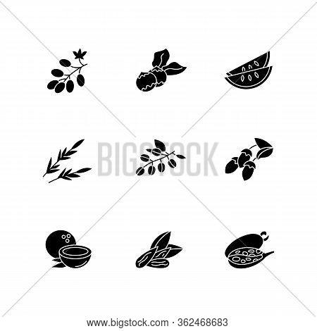 Hair Oil Ingredients Black Glyph Icons Set On White Space. Jojoba Essence For Nourishment. Herbal Co