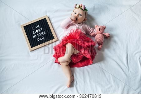 8 Eight Months Old Baby Girl Laying Down On White Background With Letter Board And Teddy Bear. Flat