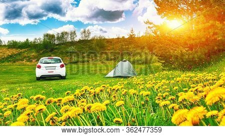 Beautiful Landscape Of Meadow And Flowers With  Modern Car Parked Next To Tent. Camping Adventure In