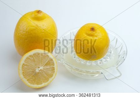 Lemons Next To A Vintage Squeezer Of Pressed Glass For The Preparation Of Juice
