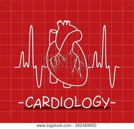 Vector Human Heart And Heartbeat Thin Line As Medical Symbol Of Cardiology. Ekg Heart Pulse Chart