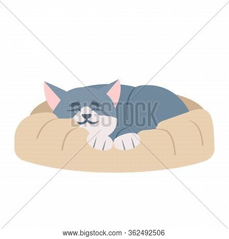 Cute Sleeping Cat Semi Flat Rgb Color Vector Illustration. Adorable Kitten Taking Nap, Snoozing Kitt