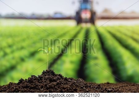 Green Sprout With Water Drop Growing Out From Soil On Background Tractor Watering Green Field