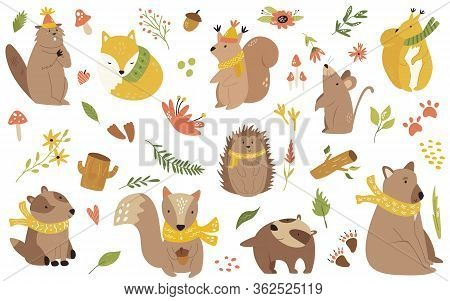 Big Bundle Of Cute Forest Animals In Scarfs