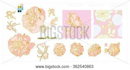 Vector Luxury Pink Peony Blossom Icon Set. Realistic Peony Flower Illustration Set In Dusty Pink. El