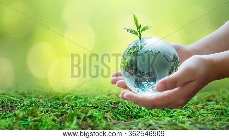 Adults Are Sending The World To Babies. Concept Day Earth Save The World Save Environment The World