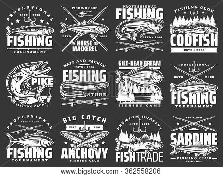 Fishing Club Badges, Big Fish Catch Tournaments And Fishery Market Vector Icons. Fisherman Rod, Hook