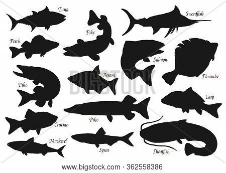 Fishes, Silhouette Vector Icons, Ocean, River Or Sea And Lake Fishing Fish. Pike, Tuna Or Crucian, S