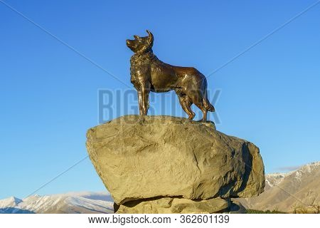 Tekapo / New Zealand, April 6 2019 ; New Zealand Collie Sheepdog Monument By Sculptor Innes Elliott