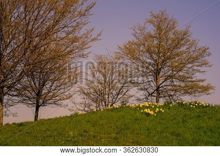 The First Spring Day Of The Year In Germany