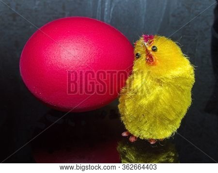 Red Easter Egg And A Cute Little Yellow Chick. Happy Day Bright Easter! Orthodox Easter Holiday.
