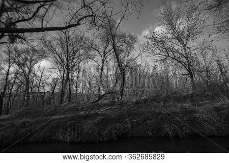 Small River In Chernobyl, Ukraine. Apocalyptic Atmosphere. Radiation Everywhere. Black And White Mon