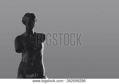 Black And White Aphrodite Statute With Gray Background