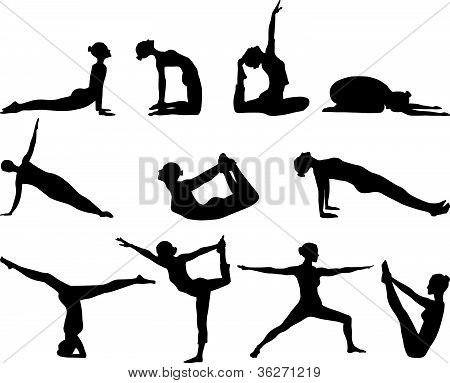 Silhouettes of yoga positions on white background