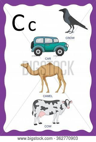 Vector Illustration English Alphabet With Pictures Word And Titles For Children Education. Children