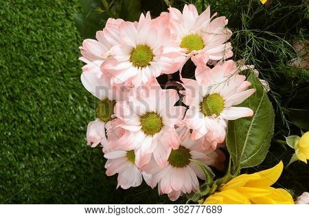 Flower Bouquet, Roses, Aster, Sunflower For Floral Background
