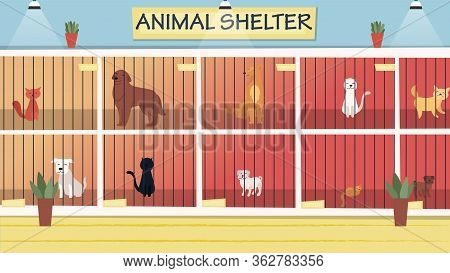 Animal Shelter Concept. Lonely Animals In Cages Wait For The Adoption. Rehabilitation Or Adoption Ce