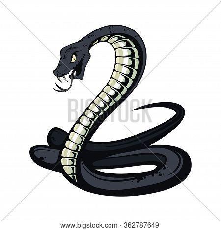 Black Mamba. Teeth Bared, Ready To Strike. Black Snake Vector Illustration. Poisonous Snake Common I
