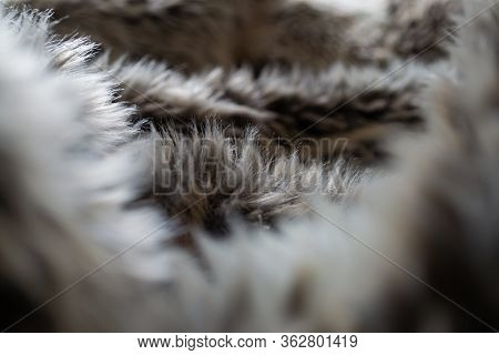 Looking Through A Faux Fur Blanket With Brown, White And Grey Colours