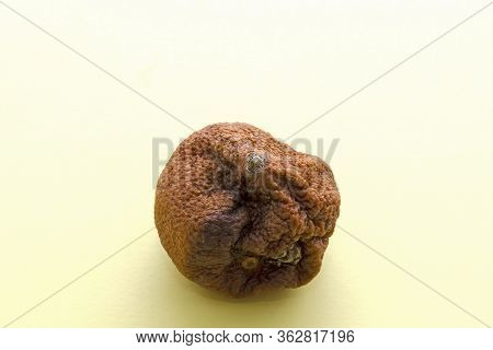 In The Center Of A Rotten Ugly Mandarin On A Yellow Background. Orange Mandarin With Brown Stain, To