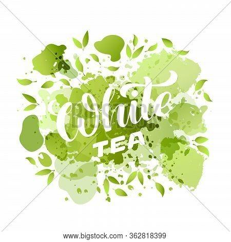 Vector Illustration Of White Tea Brush Lettering For Package, Banner, Flyer, Poster, Bistro, Café, S