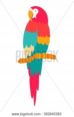 Vector Clip Art Illustration Of A Macaw Parrot Sitting On A Branch And Looking Left Side. Cute Parro