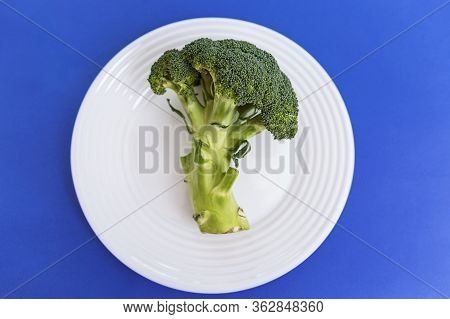 The Head And Stalk Of Broccoli On A Clear White Plate In The Middle Of The Shot On A Blue Background