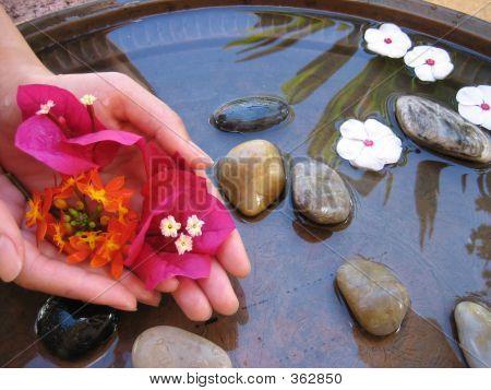 Hand Treatment 2
