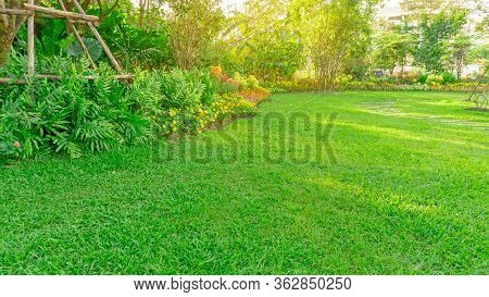 Green Grass Lawn In A Garden With Flowering Plant, Shurb, Trees And Small Random Pattern Of Grey Con