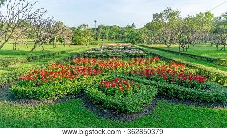 Pattern Of English Formal Garden Style, Red Madagascar Periwinkle And Colorful Flowering Plant Bloom