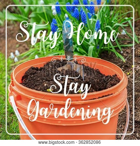 Stay Home, Stay Gardening quote. Gardening activity while staying home in isolation.