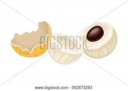 Longan Fruit Of Circular Shape Showing Translucent Flesh And Black Seed Inside Vector Illustration