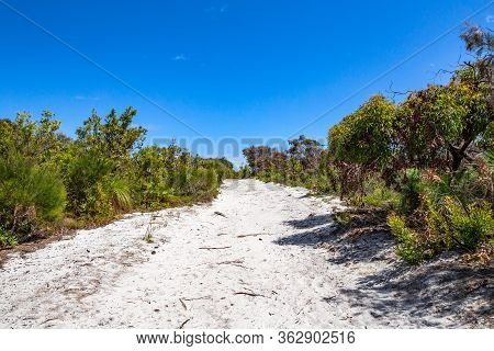A Sandy Hiking Trail Through The Forest At Clear Day Noosa National Park, Queensland, Australia.