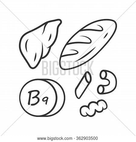 Vitamin B9 Linear Icon. Bread, Liver And Pasta. Meat And Flour Products. Folic Acid Natural Food Sou