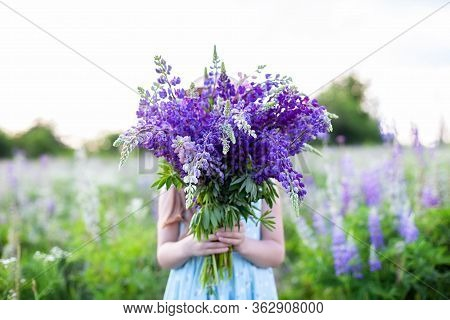 A Hippy Girl Holding Bouquet Of Wildflowers In Her Hands. Girl Hid Her Face Behind Bouquet Of Lupins