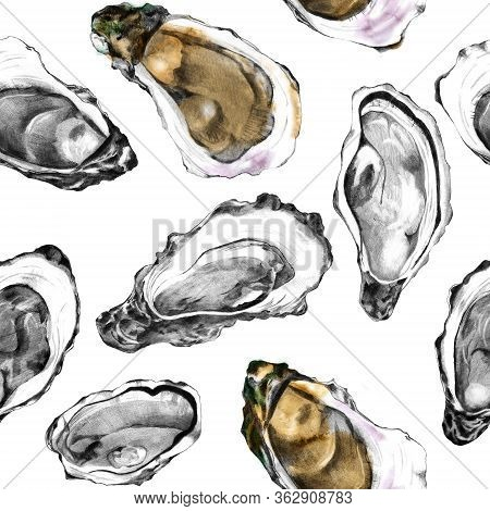 Hand Drawn Pencil Sketch Of Oyster Shells On White. Raw Shellfish Background. Seamless Pattern Of Ed