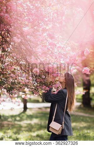 Beautiful Girl Enjoys The Scent Of Flowering Tree. Portrait Of Beautiful Woman With Blooming Cherry